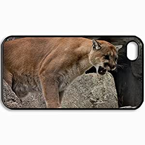 Personalized Protective Hardshell Back Hardcover For iPhone 4/4S, Cougar Cougar Mountain Lion Wildcat Grin Rage Design In Black Case Color
