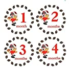 Monthly Stickers Monthly Baby Boy Sport Stickers Ohio State Buckeyes Football Sports Monthly Stickers Waterproof Baby Shower Gift