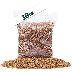 Golden Grubs Dried Mealworm 100% All-Natural High-Protein For Chicken, Duck, wide bird (10oz)