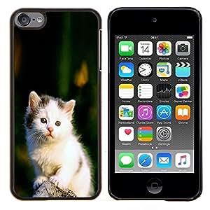 "Planetar® ( Lindo triste Blanco Furry Fuzzy gatito gato"" ) iPod Touch 6 Fundas Cover Cubre Hard Case Cover"