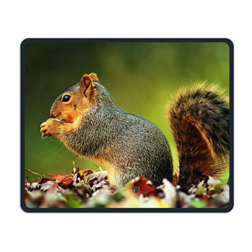 - Playful Squirrel Eat Non-Slip Personality Designs Gaming Mouse Pad Black Cloth Rectangle Mousepad Art Natural Rubber Mouse Mat with Stitched Edges