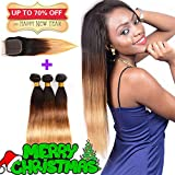 Ombre Brazilian Hair 3 Tone Bundles with Lace Closure, Ombre Weft Straight Human