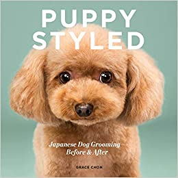 Amazoncom Puppy Styled Japanese Dog Grooming Before