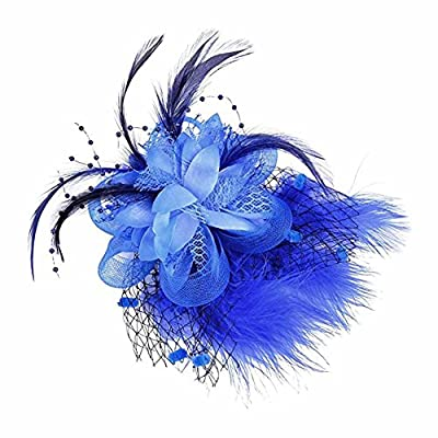 Song Qing Fascinator Feather Wedding Cocktail Party Headwear 1920s Headpiece Hair Clip