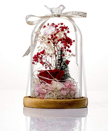 SEVENBEES Forever Real Rose, Everlasting Flower and Christmas Tree Preserved Fresh Flower Live Enchanted Rose L-E-D in Glass Dome Cover with High-End Gift Box,Valentine's Party Gifts, Wedding Gifts (Christmas Tree D E L)