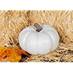 Elanze-Designs-Set-Ivory-6-inch-Decorative-Resin-Harvest-Pumpkins-White