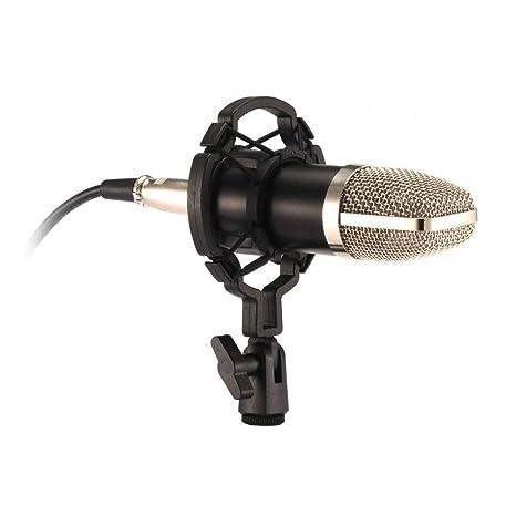 Kit de Micrófono de Condensador de Difusión Profesional Para ...