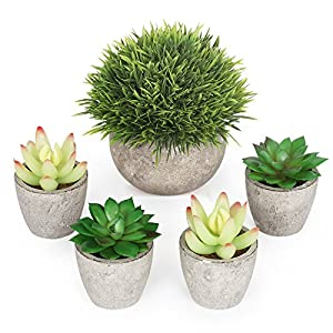 Artificial Succulent Plants Potted - Fake Succulents - Set of 5 - Home, Office - Rustic Bathroom Decor Gift - Faux Potted Plants - Assorted Artifical Decorative centerpieces Plants in Pots for Table 17
