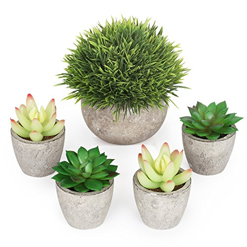 Plants Potted - Fake Succulents - Set of 5 - Home, Bath, Office Decor Gift - Faux Potted Plants - Assorted Artifical Decorative centerpieces Plants in Pots Table ()
