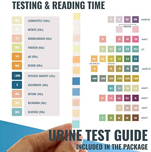 Urine Test Strips for Urinalysis 11 Parameters. 155 Cnt Reagent Test Strips for UTI, pH, Ketone, Protein, Kidney, Acidosis, CKD, Gallbladder, Liver Function Testing. 4