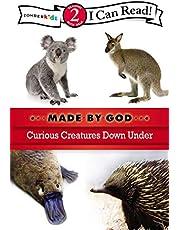 Curious Creatures Down Under: Level 2