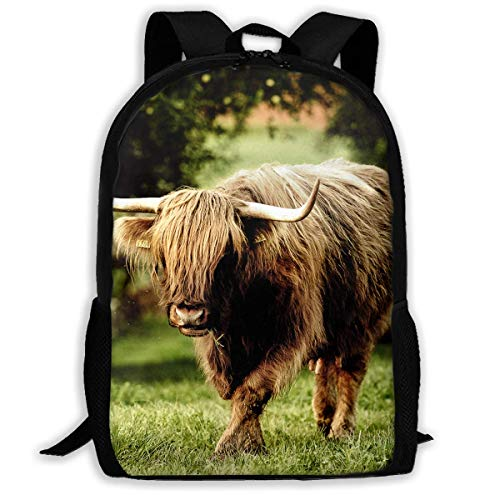 Yak School Backpack Shoulder Bags For Adult for sale  Delivered anywhere in USA
