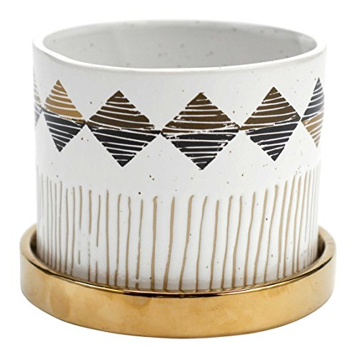 Shopper Thoughtful (FLOOR | 9 Diamond Border Planter with gold tray)