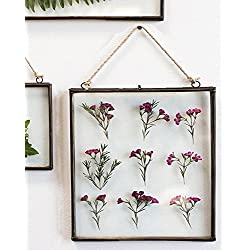 Hanging Metal Double Glass Frame 14 x 14.75