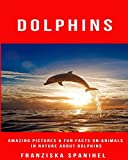 Dolphins: Amazing Pictures & Fun Facts on Animals in Nature about Dolphins