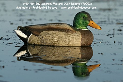 Magnum Weighted Keel Mallard Duck (Avery Greenhead Gear GHG, Magnum Mallard Duck Decoys, 70002 - 6 Pack)