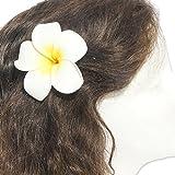 DreamLily Women's Fashion 3 Pcs Hawaiian White Plumeria Flower Foam Hair Clip Balaclavas for Beach (White)