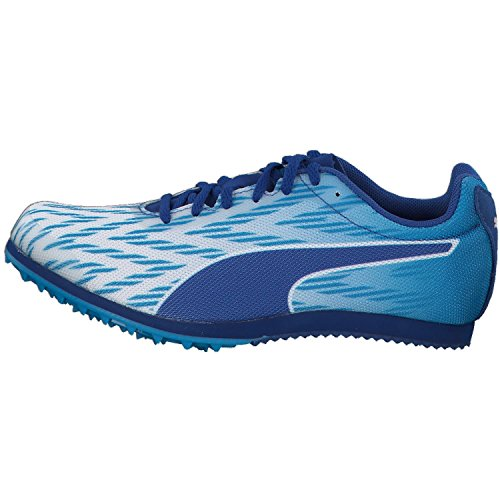 Puma Unisex-volwassenen Evospeed Ster 5,1 Traillaufschuhe Puma Wit-blue Danube-true Blue