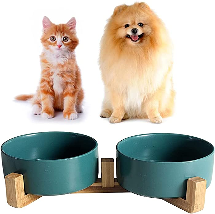 The Best Dog Food Water Bowl Wood