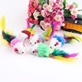 DierCosy Pack of 5 Furry Kitten Mouse Cat Toys with Feathers and Hair