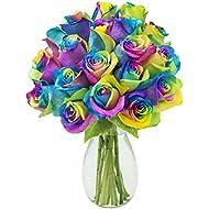 KaBloom Bouquet of Fresh Cut Rainbow Roses: 18 Rainbow-Swirl Roses with Vase