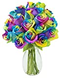 Fresh Cut Rainbow Rose Bouquet of 18 Rainbow-Swirl Roses (Farm-Fresh, Long-Stem) with Free Vase Included