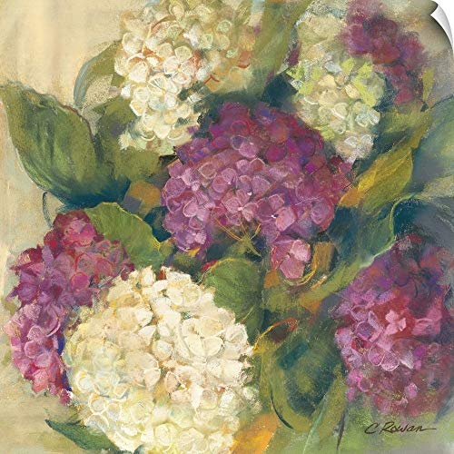Bouquet Delight (Carol Rowan Wall Peel Wall Art Print Entitled Hydrangea Delight I 35