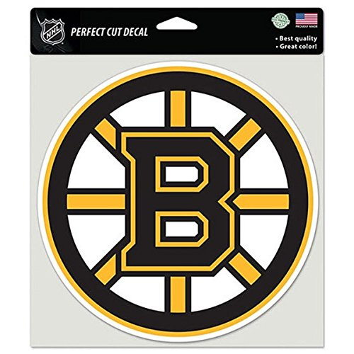WinCraft Boston Bruins NHL Hockey Sports Team Auto Car Truck Color 8