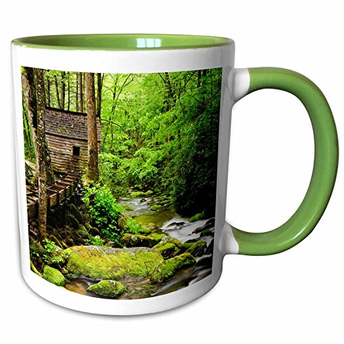 3dRose Danita Delimont - Mills - Tub Mill, Great Smoky Mountains, Tennessee, USA - US43 BJY0009 - Jaynes Gallery - 11oz Two-Tone Green Mug (mug_146558_7) Tennessee Beverage Tub