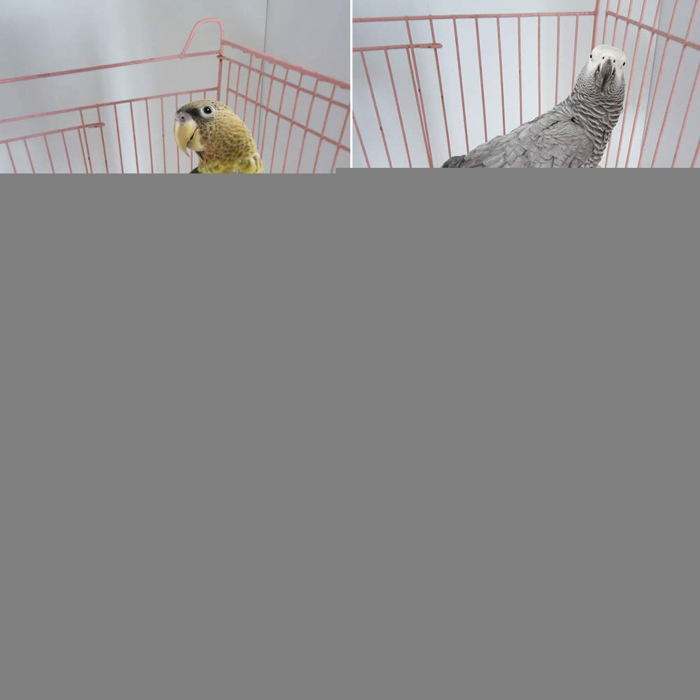Fliyeong Pet Parrot Wood Platform Stand Rack Toy Hamster Branch Perches Bird Cage New Premium Quality