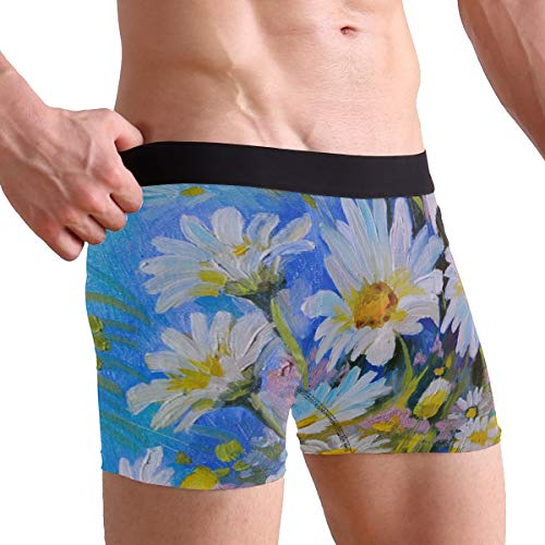 Daisy Boxers - WXLIFE Art Painting Floral Flower Daisy Boxer Briefs Men's Underwear for Men Boy
