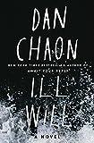Image of Ill Will: A Novel