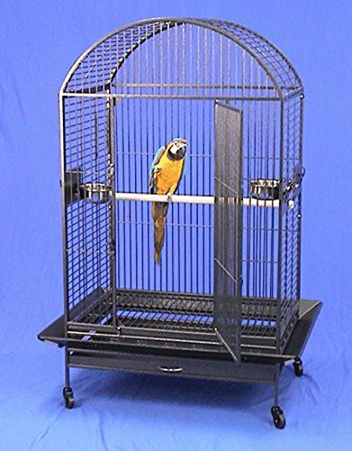 X Large DomeTop Wrought Iron Bird Parrot Cage, 36''x26''x64''H, Black Vein by Mcage