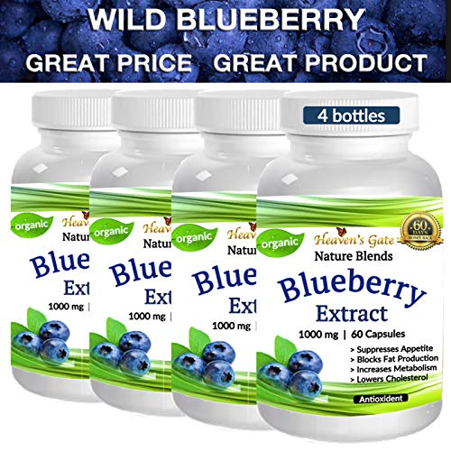 4 Wild Blueberry Extract - Made from Organic Berries - Powerful Antioxidant - GMO and Gluten Free - 1000 mg Per Serving (1 Capsule) - 240 Capsules (4-8 Months) - Supports Good Vision, Memory & Brain