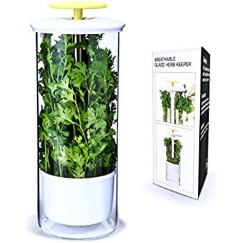 Premium Herb Keeper and Herb Storage Container – Extra Large Glass Design Keeps Greens and Vegetables Fresh for 2x Longer – By NOVART