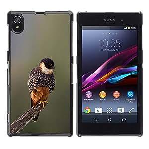 Pájaro de bebé de primavera Naturaleza borrosa Branch- Metal de aluminio y de plástico duro Caja del teléfono - Negro - Sony Xperia Z1 L39