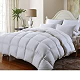 Luxury Bedding's Queen Size Luxurious 1500 Thread Count Siberian GOOSE DOWN Comforter, 100% Egyptian Cotton Cover, Solid White Color, 750 Fill Power, 50 Oz Fill Weight
