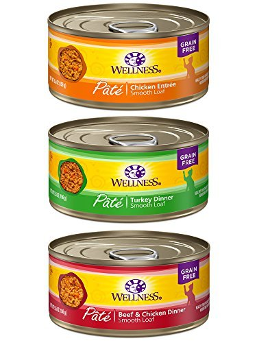 Wellness Complete Health Pate Cat Food Variety Bundle 5 Ounc
