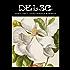 Ehret & Haid London Botanical Illustrations