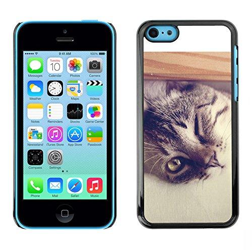 Omega Case PC Polycarbonate Cas Coque Drapeau - Apple iPhone 5C ( Cool Cat )