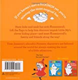 Moomin's Lift-The-Flap Hide and Seek: with Big
