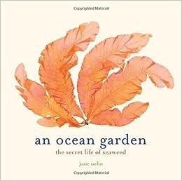 amazoncom an ocean garden the secret life of seaweed 9781419711701 josie iselin books - Ocean Garden