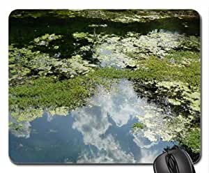 Blue Springs Reflection Mouse Pad, Mousepad (Lakes Mouse Pad)