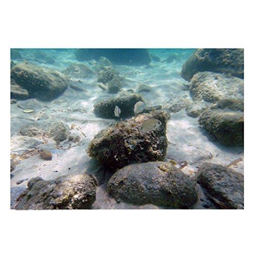 (YOKOU Decorative Wallpaper Aquarium Background Fish Tank Backdrop Static Cling Wallpaper Sticker, Submarine Reef 35.4