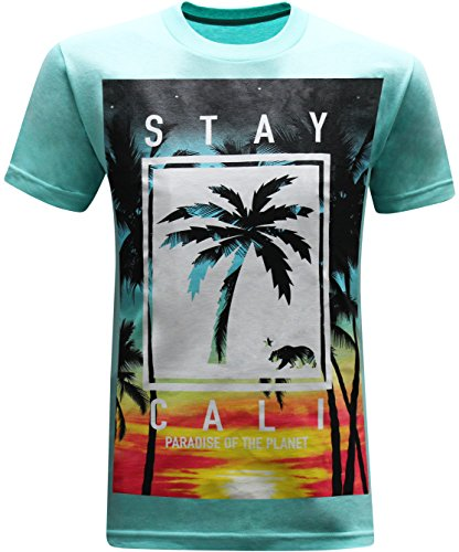 California Republic Stay Cali T Shirt product image