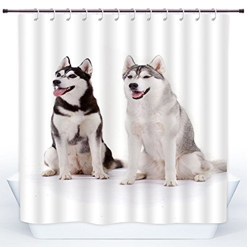 Polyester Shower Curtain,Alaskan Malamute,Furry Arctic Doggies Husky Whelp Pedigree Pet Happy Siberian Mammal Decorative,Black Cream White,Polyester Shower Curtains Bathroom Decor Set with (Alaskan Malamute Siberian Husky)
