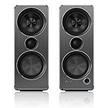 Philips Multimedia Speakers 2.0 (SPA8210/37)