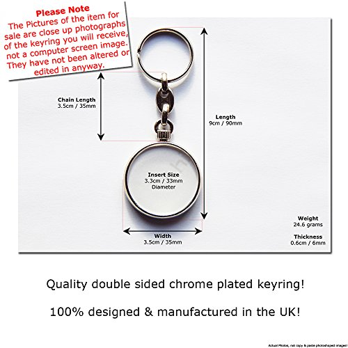 GEMINI Zodiac Star Sign and Picture Chrome Keyring Picture Both Sides