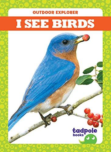 I See Birds (Tadpole Books: Outdoor Explorer)