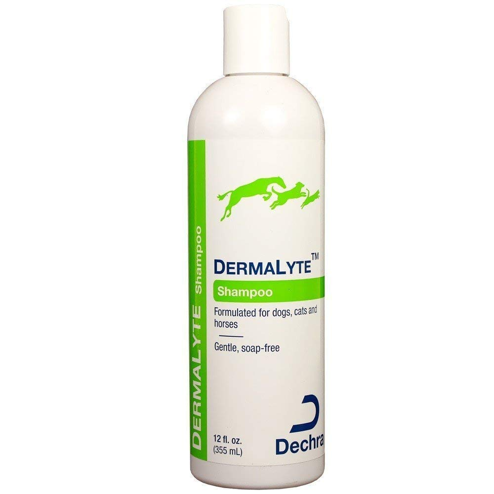 Dechra DermaLyte Shampoo for Cats and Dogs 12 oz by Dechra